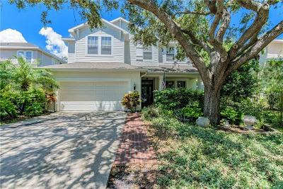 Tampa Single Family Home For Sale: 3204 Park Green Drive