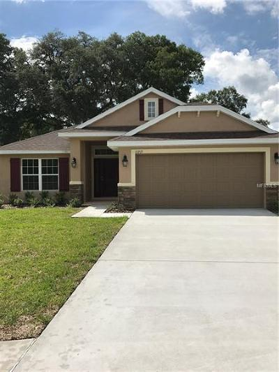 Hudson Single Family Home For Sale: 14518 Potterton Circle