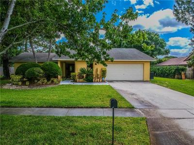 Tampa Single Family Home For Sale: 13917 Middle Park Drive