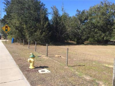 Dade City FL Residential Lots & Land For Sale: $2,500,000