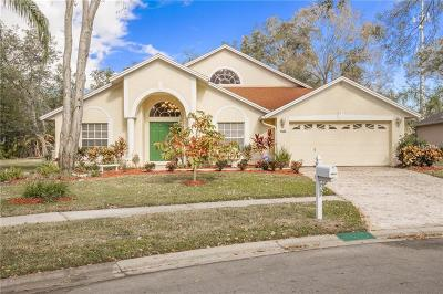 Tampa Single Family Home For Sale: 6533 Steeplechase Drive