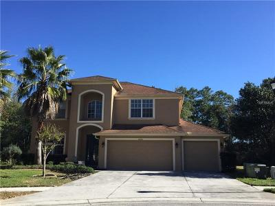 Suncoast Lakes, Suncoast Lakes Ph 01, Suncoast Lakes Ph 02, Suncoast Lakes Ph 03, Suncoast Lakes Ph 1, Suncoast Lakes Ph 2 Single Family Home For Sale: 10636 Deerberry Drive