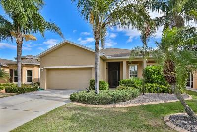 Sun City Center Single Family Home For Sale: 319 Siena Vista Place