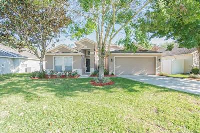 Apopka Single Family Home For Sale: 139 Summit Ash Way