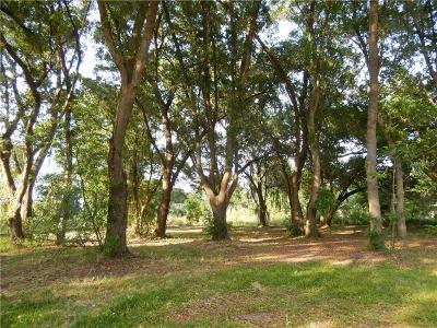Plant City Residential Lots & Land For Sale: 3338 Sam Allen Oaks Circle