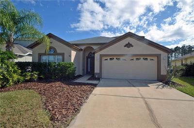 Dade City, Apollo Beach, St Petersburg, Wesley Chapel, San Antonio, Clearwater, Lithia, Seffner, Land O Lakes, Ruskin, Temple Terrace Rental For Rent: 3044 Sunwatch Drive