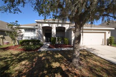 Dade City, Apollo Beach, St Petersburg, Wesley Chapel, San Antonio, Clearwater, Lithia, Seffner, Land O Lakes, Ruskin, Temple Terrace Rental For Rent: 31343 Anniston Drive