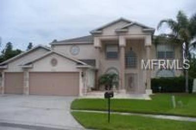 Dade City, Apollo Beach, St Petersburg, Wesley Chapel, San Antonio, Clearwater, Lithia, Seffner, Land O Lakes, Ruskin, Temple Terrace Rental For Rent: 27000 Sea Breeze Way