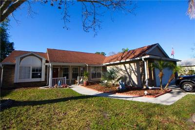 New Port Richey, New Port Richie Single Family Home For Sale: 7447 Turtlebrook Lane