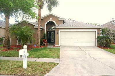 Tampa, Clearwater, Largo, Seminole, St Petersburg, St. Petersburg, Tierra Verde Rental For Rent: 9809 Bayboro Bridge Drive