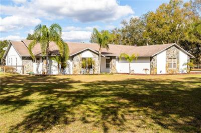 Plant City Single Family Home For Sale: 7314 W Knights Griffin Road