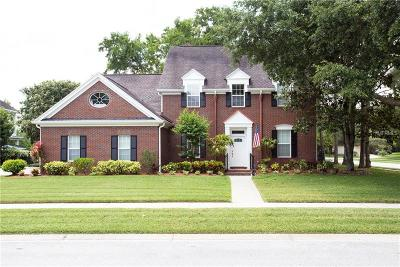 Wesley Chapel Single Family Home For Sale: 29743 Chapel Park Drive
