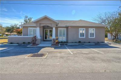 Hillsborough County Commercial For Sale: 219 Cook Street