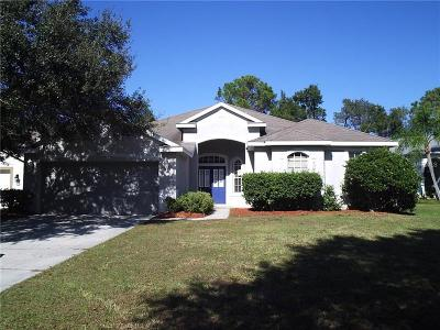 Hernando County, Hillsborough County, Pasco County, Pinellas County Rental For Rent: 10022 Cannon Drive