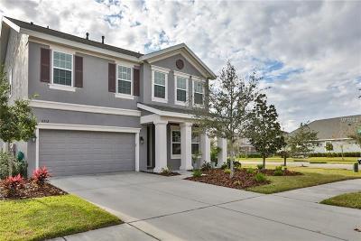Apollo, Apollo Beach Single Family Home For Sale: 6512 Park Strand Drive