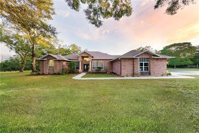 Thonotosassa Single Family Home For Sale: 11119 Serenity Oaks Lane
