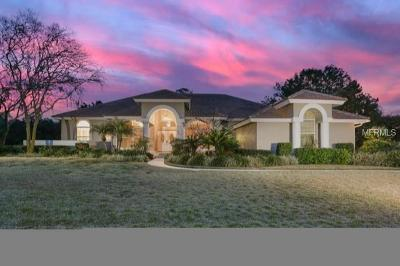 Wesley Chapel Single Family Home For Sale: 30248 Laurelwood Lane