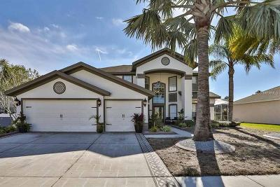 Hernando County, Hillsborough County, Pasco County, Pinellas County Single Family Home For Sale: 13001 Carlington Lane