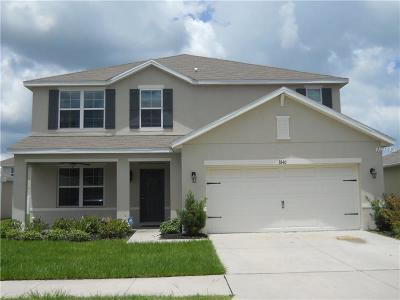 Plant City Single Family Home For Sale: 3840 Crystal Dew Street