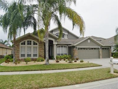 Wesley Chapel FL Single Family Home For Sale: $399,990