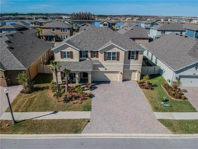 Lutz Single Family Home For Sale: 1893 Moorhen Way