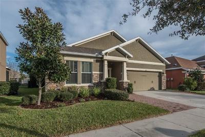Lithia Single Family Home For Sale: 5117 Sanderling Ridge Drive