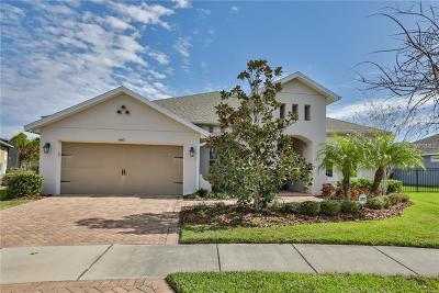 Apollo Beach Single Family Home For Sale: 6647 Current Drive