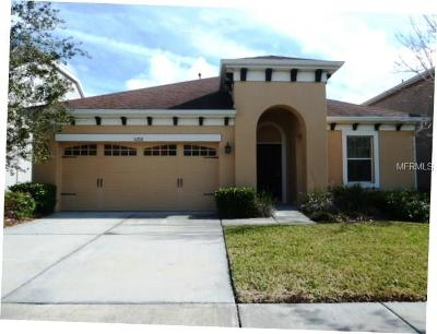Lithia Single Family Home For Sale: 5208 Sanderling Ridge Drive