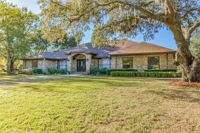 Brandon Single Family Home For Sale: 916 Centerbrook Drive