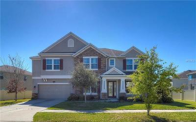Tampa Single Family Home For Sale: 20010 Painting Nature Lane