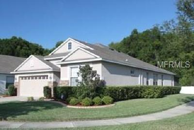 Valrico Single Family Home For Sale: 510 Westchester Hills Lane