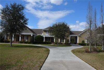 Lithia Single Family Home For Sale: 11441 Hammock Oaks Court