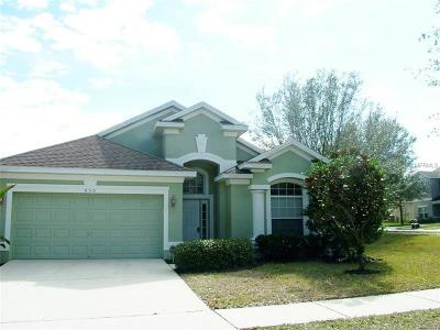 Valrico Single Family Home For Sale: 650 Chesney Drive