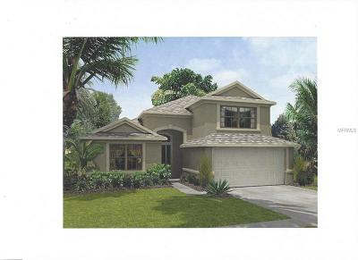 Gibsonton Single Family Home For Sale: 9919 Alafia River Lane