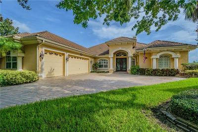 New Port Richey Single Family Home For Sale: 1512 Parilla Circle