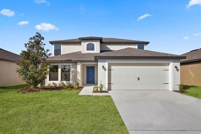 Ruskin Single Family Home For Sale: 750 Chatham Walk Drive