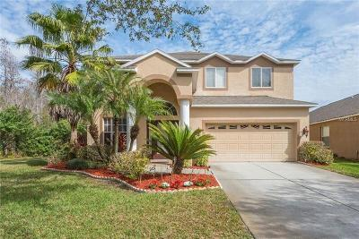Lutz Single Family Home For Sale: 19267 Fishermans Bend Drive