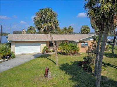Gibsonton Single Family Home For Sale: 9902 Peninsular Drive