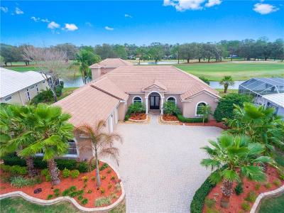 Valrico Single Family Home For Sale: 5219 Sand Trap Place
