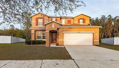 Riverview Single Family Home For Sale: 10709 Boyette Creek Boulevard