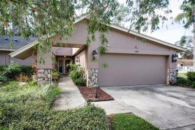 Palm Harbor Single Family Home For Sale: 3418 Tanglewood Terrace