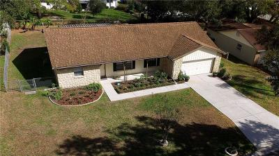 Brandon Single Family Home For Sale: 2803 Raspberry Place