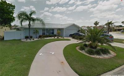 Hernando County, Hillsborough County, Pasco County, Pinellas County Single Family Home For Sale: 6316 Lake Sunrise Drive