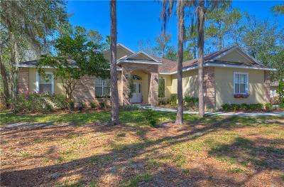 Lithia FL Single Family Home For Sale: $497,500