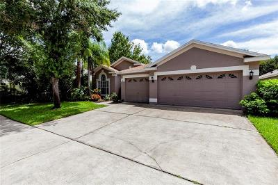 Tampa Single Family Home For Sale: 10525 Weybridge Drive