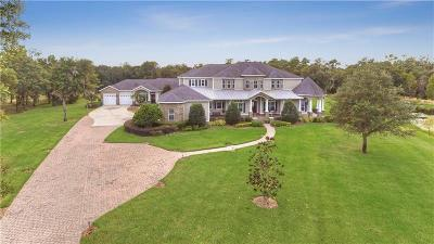 Lithia Single Family Home For Sale: 11723 Doe Creek Drive
