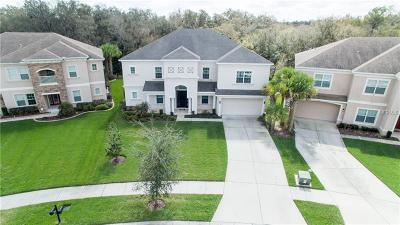 Lithia Single Family Home For Sale: 17333 Chelsea Downs Circle