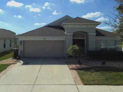 Wesley Chapel Single Family Home For Sale: 7653 Outerbridge Street