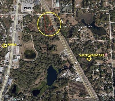 Lutz Residential Lots & Land For Sale: 16370 N Nebraska Avenue