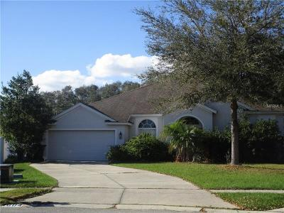 Hernando County, Hillsborough County, Pasco County, Pinellas County Single Family Home For Sale: 1604 Acorn Leaf Court